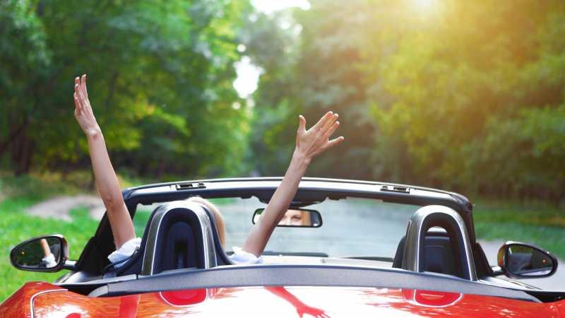 Dasha Petrenko / Shutterstock.com
