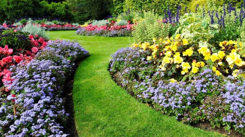 Should You Hire a Landscaper, a Landscape Designer, or a Landscape Architect?